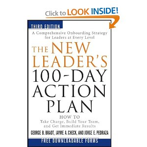 100 day business plan